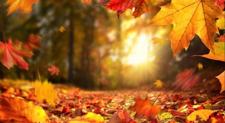 Outono em Blumenau com o Hotel Glória