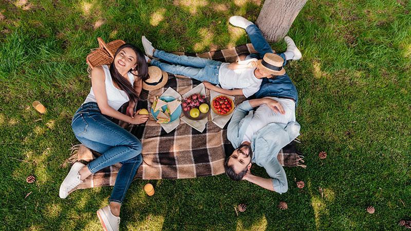 Read more about the article Conheça o Parque da Nascente em Blumenau